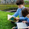 read, books, lawn